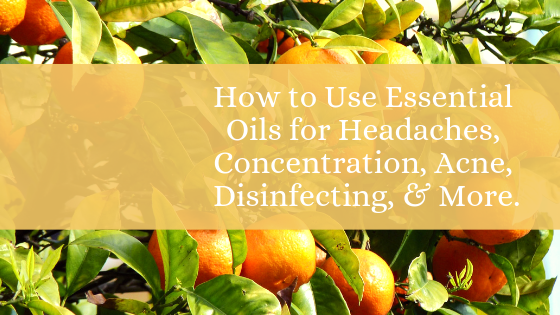 How to Use Essential Oils for Headaches, Concentration, Acne, Disinfecting, & More